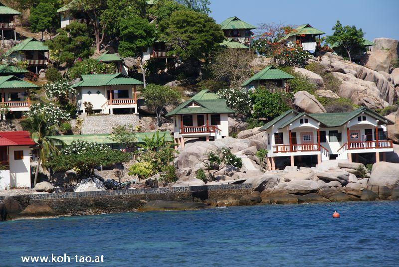 Fotos thailand black tip dive resort koh tao thailand - Ko tao dive resort ...
