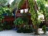 Kae Big Fish Resort Koh Tao Thailand 011