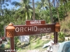 orchid-bungalows01