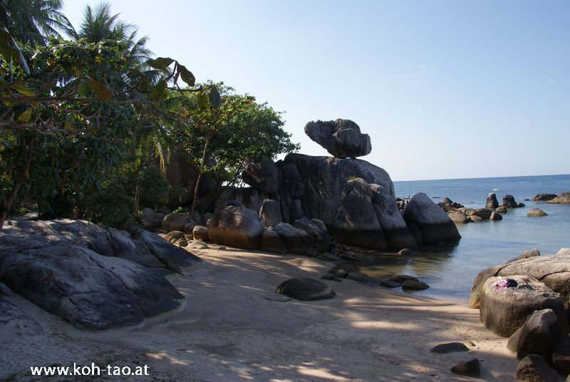 sensi-paradise070