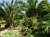 sunshine_1_-bungalow27