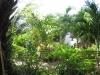sunshine_Sunshine 1 Bungalow Resort, Koh Tao, Chalok Baan Kao,1_bungalow-20
