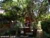 tropicana-resort011