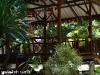 tropicana-resort015