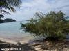 tropicana-resort031