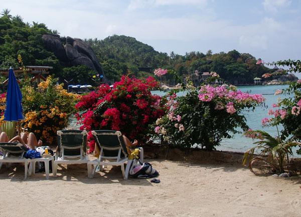 Das Koh Tao Resort liegt in der Chalok Baan Kao Bucht direkt am Meer. Die Bucht ist wunderschön und ruhig. Bei Ebbe muss man allerdings schon ein Stück […]