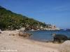 Black Tip Dive Resort Koh Tao 15