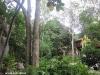 dusit-buncha-resort-thailand035
