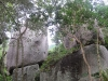 dusit-buncha-resort-thailand036