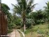 Hotel Koh Tao Cabana 7