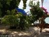 Kae Big Fish Resort Koh Tao Thailand 008