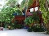 Kae Big Fish Resort Koh Tao Thailand 012