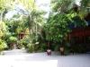 Kae Big Fish Resort Koh Tao Thailand 013
