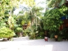 Kae Big Fish Resort Koh Tao Thailand 014