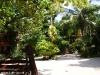 Kae Big Fish Resort Koh Tao Thailand 016
