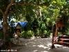 Kae Big Fish Resort Koh Tao Thailand 020