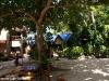 Kae Big Fish Resort Koh Tao Thailand 021