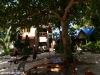Kae Big Fish Resort Koh Tao Thailand 023