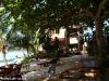 Kae Big Fish Resort Koh Tao Thailand 025