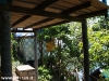orchid-bungalows03