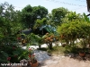 Orchid Bungalows 05