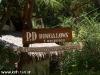 P.D Bungalows 02