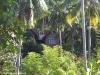 Sensi Paradise Beach Resort 07