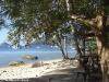 sensi-paradise021 Koh Tao