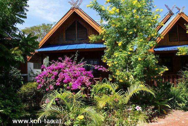 Sunshine 1 Bungalow Resort