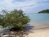 tropicana-resort032
