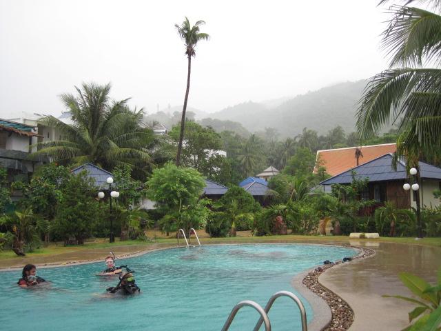 Das Crystal Dive Resort auf Koh Tao ist ein reines Tauchresort direkt an der Mae Haad Bay. PADI Kurse werden angeboten für Anfänger, für Fortgeschrittene und für Profis, […]